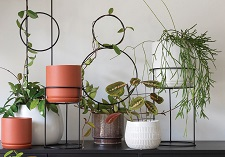 Houseplant Frames, Houseplant Stands, Houseplant Accessories